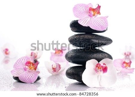 Wet spa stones with flowers on glossy white background - stock photo