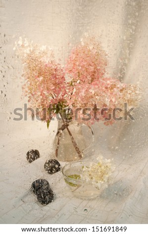 wet still life with pink hydrangea bouquet through wet glass - stock photo