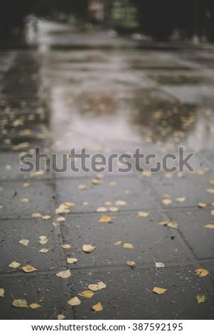 wet street ,selective focus on the nearest part, great DOF 1,2 - stock photo