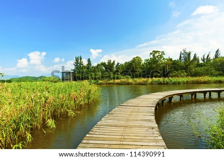 Wetland pond and wooden bridge in a clear sky - stock photo