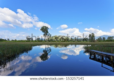 Wetland pond at day time - stock photo