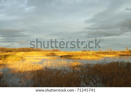 Wetlands in the autumn morning against the dark sky. - stock photo