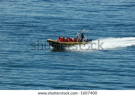 Whale watchers - stock photo