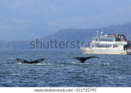 Whale Watching in Alaska - stock photo