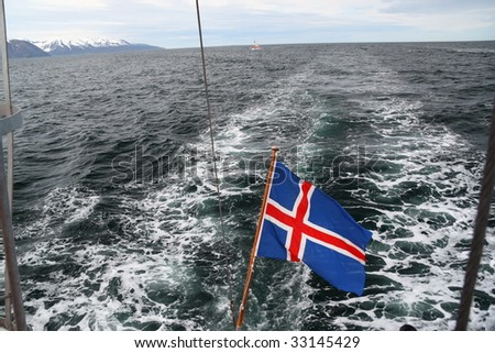 Whale watching in Iceland, Husavik - stock photo