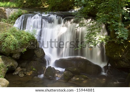 Whatcom Falls in the Pacific Northwest