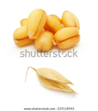 Wheat and oat grain isolated on white background - stock photo