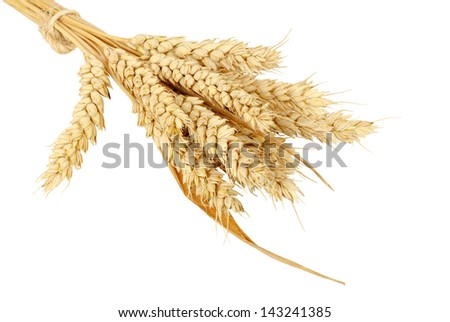 wheat bundle isolated on white