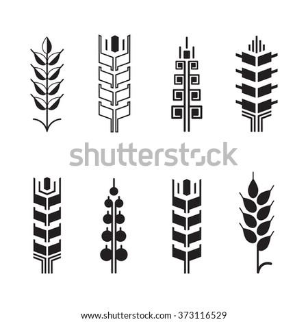 Wheat ear symbols for logo icon set, leaves icons, graphic design elements - stock photo