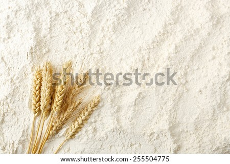 wheat ears on flour surface, full frame