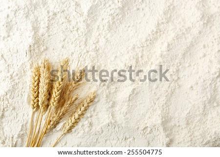 wheat ears on flour surface, full frame - stock photo