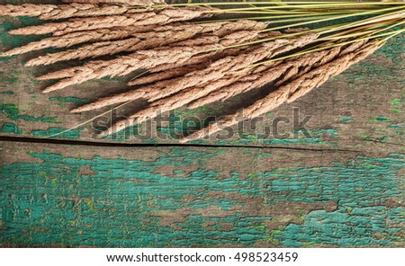 Wheat ears on wood background