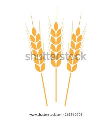 Wheat ears, rice or crop symbol on white background. Design element for bread packaging or beer label. - stock photo