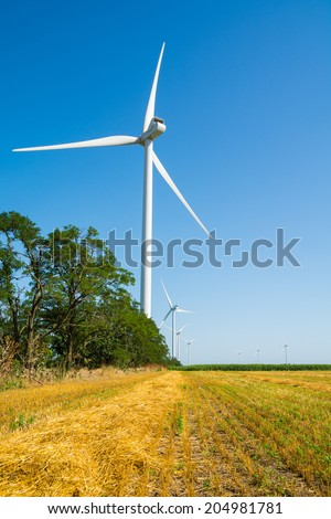 Wheat field and eco power, wind turbines