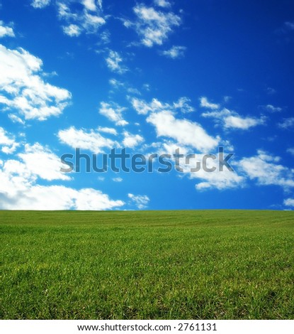 Wheat field over beautiful blue sky 10 - stock photo