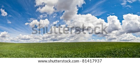 Wheat field vista with clouds in eastern Washington - stock photo