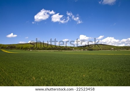 Wheat field with mountains and a forest.