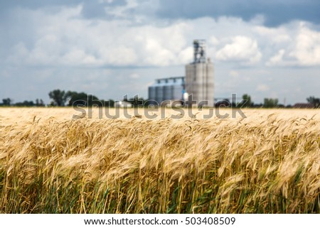 Grain Elevator Stock Images, Royalty-Free Images & Vectors ...