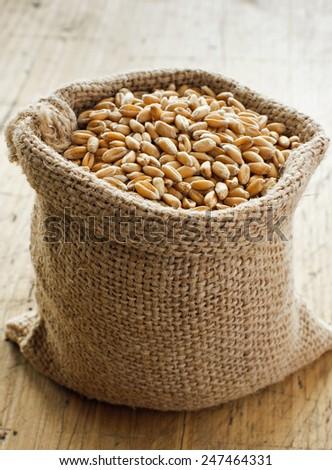 Wheat grain in small canvas sacks - stock photo
