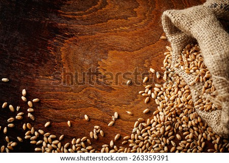 wheat grain on wooden table - stock photo