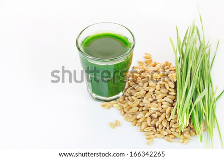 Wheat grass juice with fresh wheat grass and wheat on white background  - stock photo