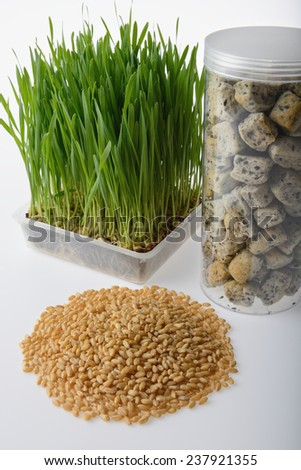 wheat grass,whole wheat bread and wheat grains  on white background - stock photo