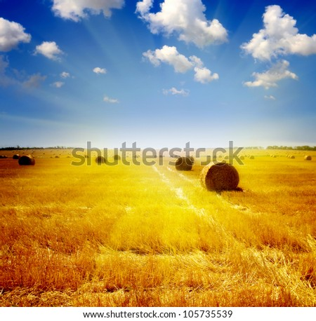 wheat haystack landscape - stock photo