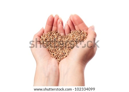 Wheat Heart in Hand - stock photo