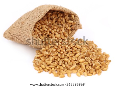 Wheat in a sack bag over white background - stock photo