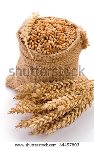 Wheat in burlap sack on white background - stock photo