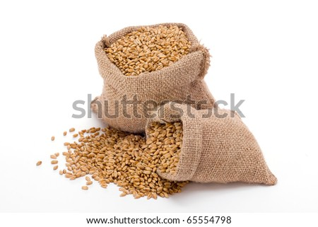 Wheat in small burlap sacks