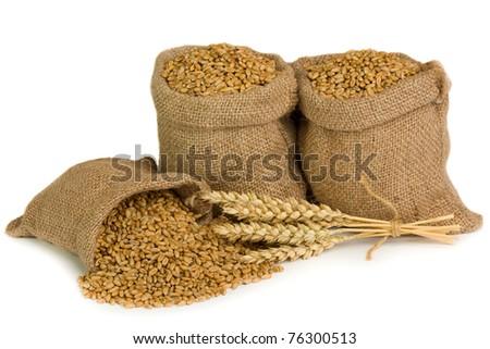 Wheat in small burlap sacks - stock photo