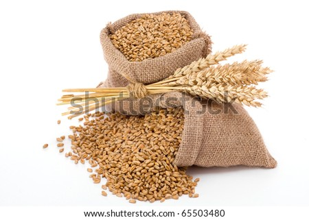 Wheat in small canvas sacks - stock photo