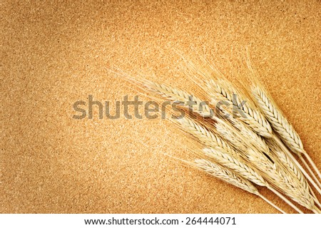 wheat isolated is on wooden background  - stock photo