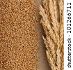 Wheat on sacking background - stock photo