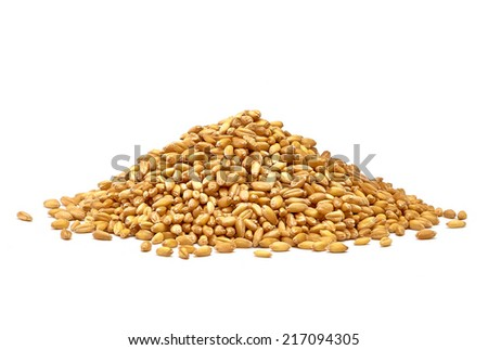 Wheat pile side view on white background - stock photo