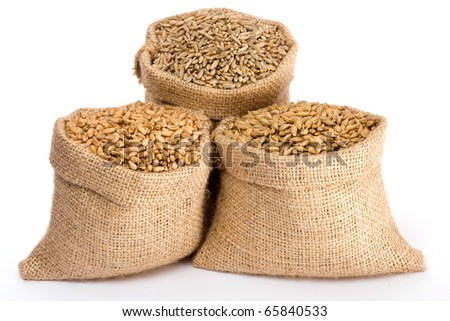 Wheat, rye and barley in small burlap sacks - stock photo