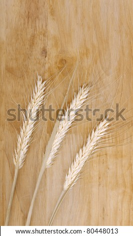 Wheat stems with seeds on a wooden background