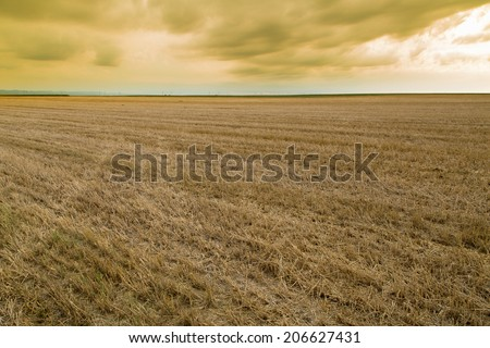 Wheat stubble field over yellow cloudscape - stock photo