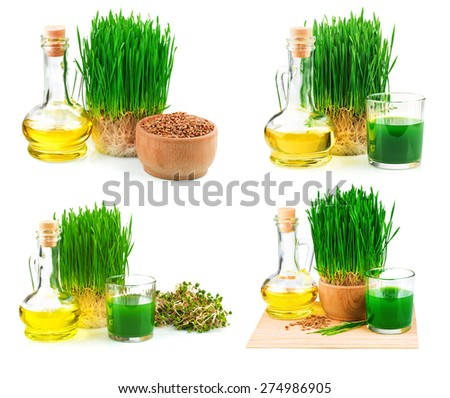 Wheatgrass juice with sprouted wheat and wheat germ oil isolated on white background, set - stock photo