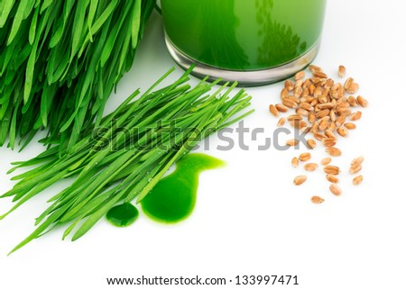 Wheatgrass juice with sprouted wheat and wheat isolated on white background - stock photo