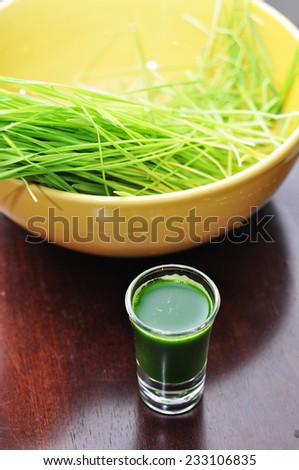 wheatgrass with glass of wheatgrass juice - stock photo