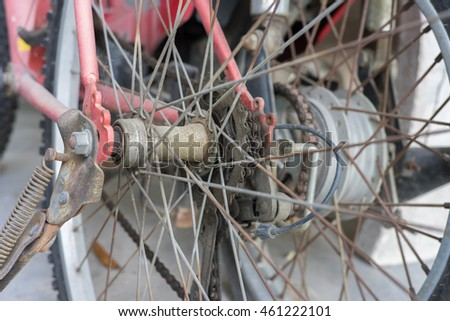 Wheel and gear of bicycle