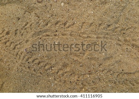 Wheel car footprints on sand the beach   - stock photo