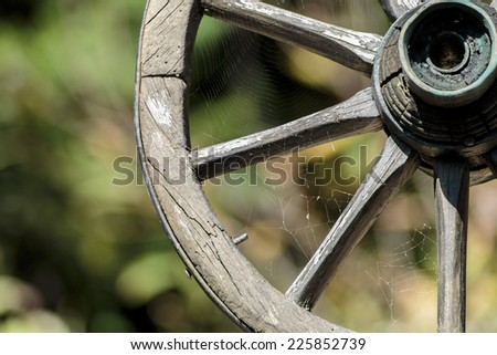 Wheel from old chariot