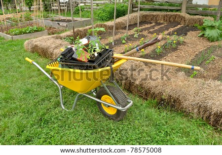 Wheelbarrow and garden tools in community garden - stock photo