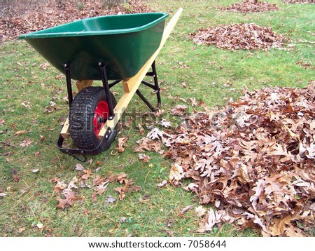 Wheelbarrow and leaves cleaning collecting gardening work - stock photo