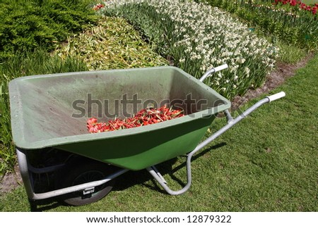 Wheelbarrow for garden working with flowers background