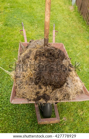 wheelbarrow full of manure and pitchfork - stock photo