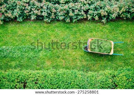 Wheelbarrow full while the grass is cut into a garden - stock photo